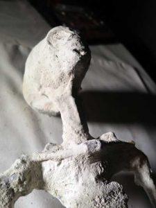 """L'un des corps humanoïdes, de type """"reptilien"""", découverts dans un site gardé secret de la région de Nasca. (c) Thierry Jamin, mars 2017."""